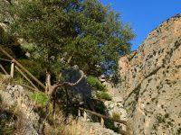 Steiler Aufstieg in der Gole del Raganello